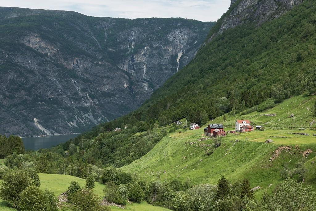 Dette er definitivt ikke Hol, men den bratte Erdalen opp fra Lærdalsfjorden. ©Foto: Jarle Wæhler / Statens vegvesen.