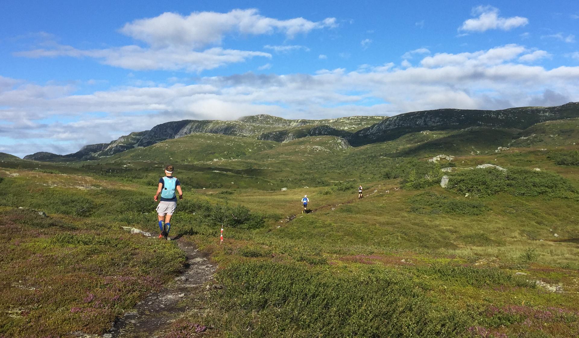 Da vi er 1000 meter over havet åpenbarer det seg et fantastisk landskap å løpe i. Her er det mye tørrere og det flater ut.