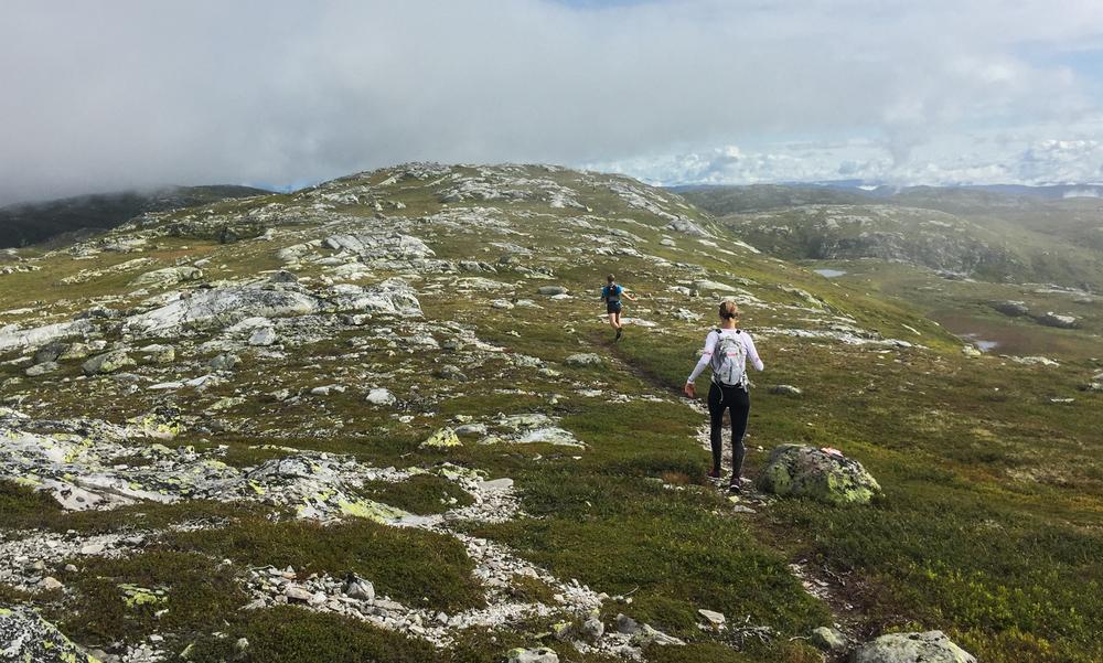 Arrangørene har lagt løypa i suverent løpeterreng. Foto: Bjørnar Eidsmo.