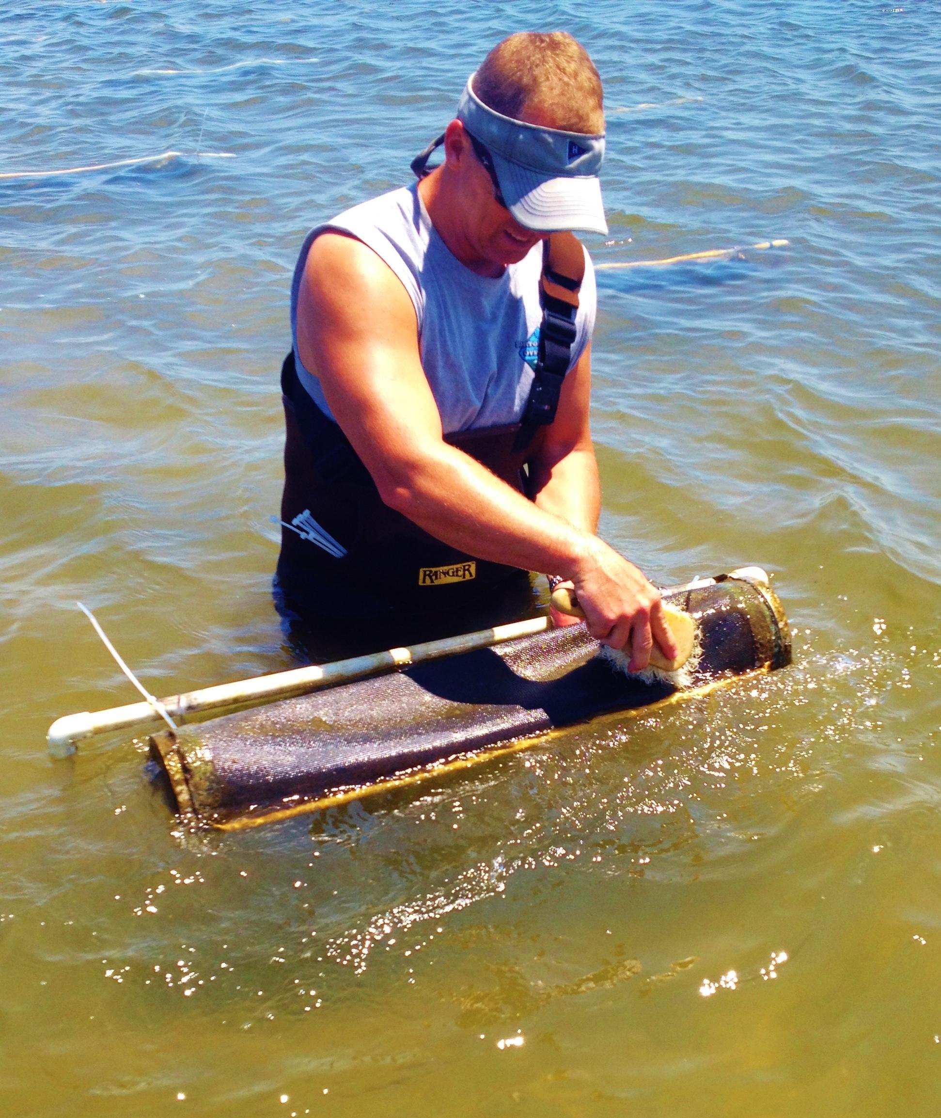 Scott Mullin from Scorton Creek Oysters