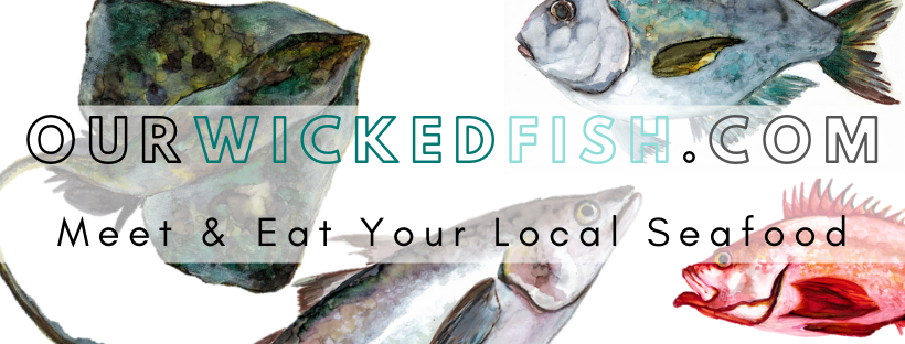 ourwickedfish.com (1).png