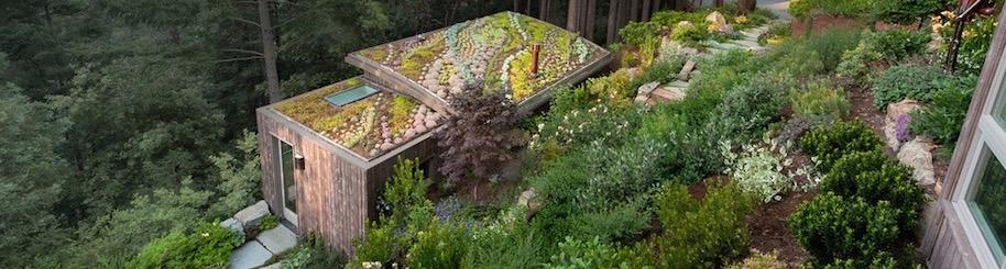 green roof slice v3.jpg