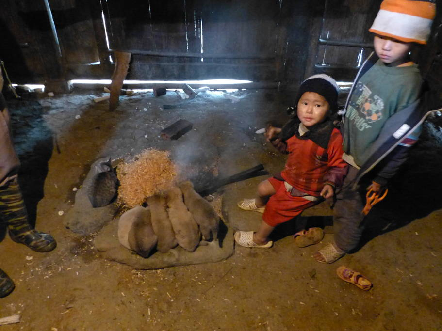 Kids (and puppies!!) at our mountain homestay