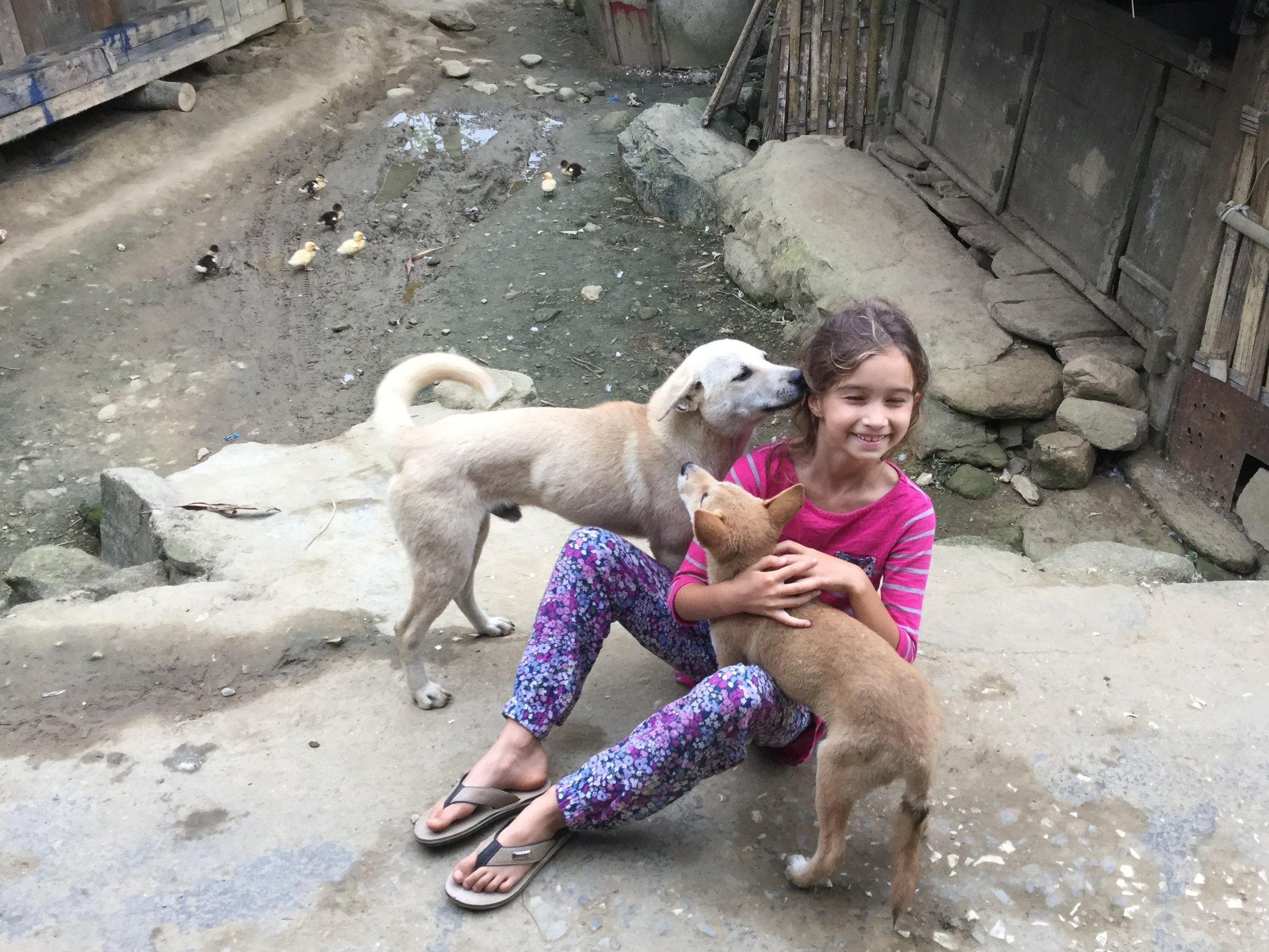 Hugs and kisses from two of the compound dogs.
