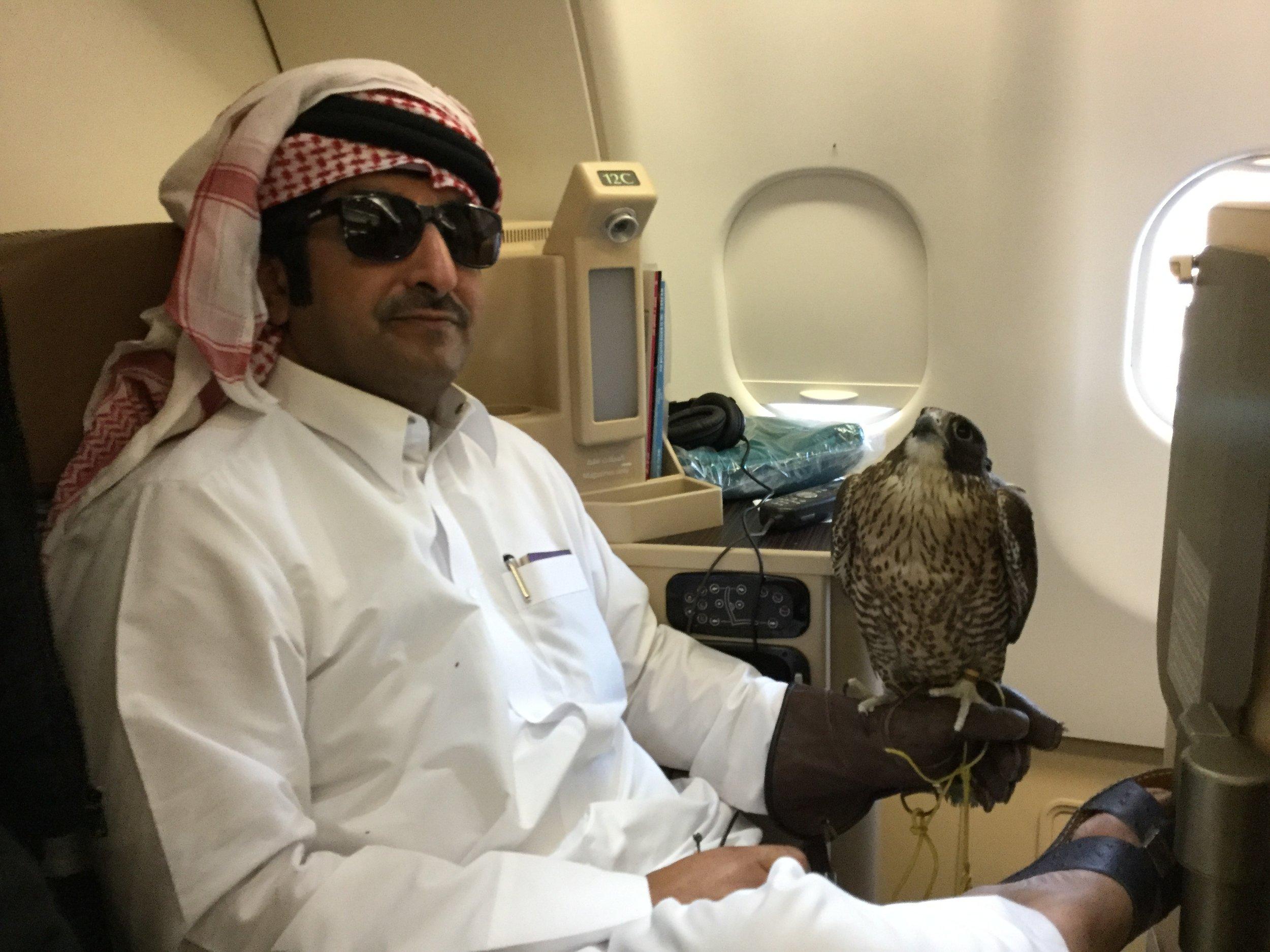 Etihad Business Class, flight Abu Dhabi - Casablanca.