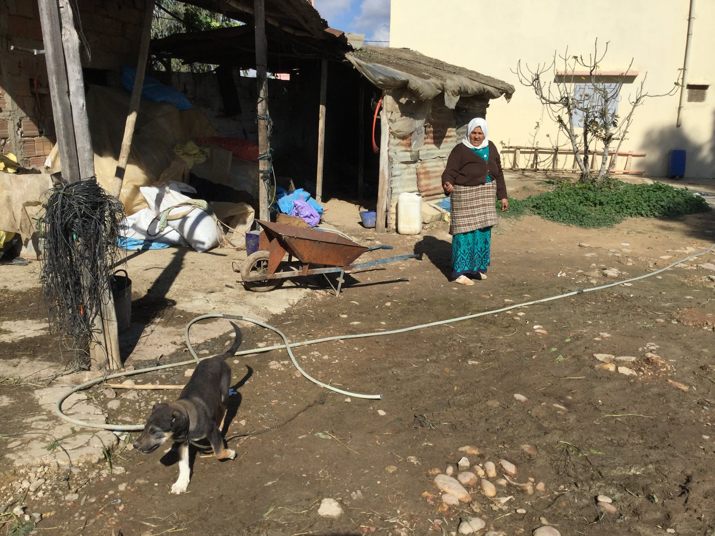 In the courtyard - the woman is Abdou's sister Nijjat, and the dog is called Jack.