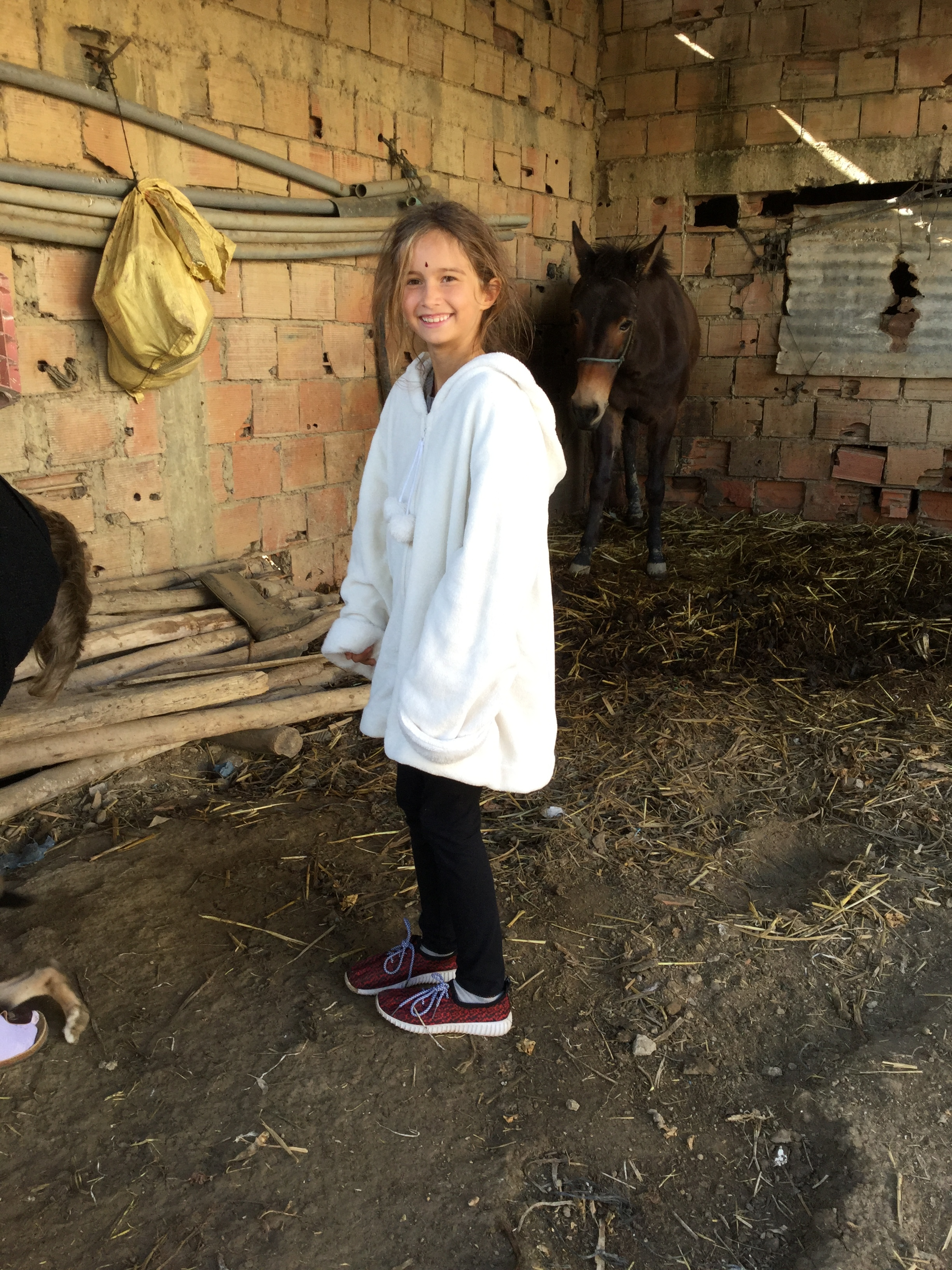 No need to say that Lili will love any place that has animals - here is the household donkey. There were also five cows and about ten chickens running around.