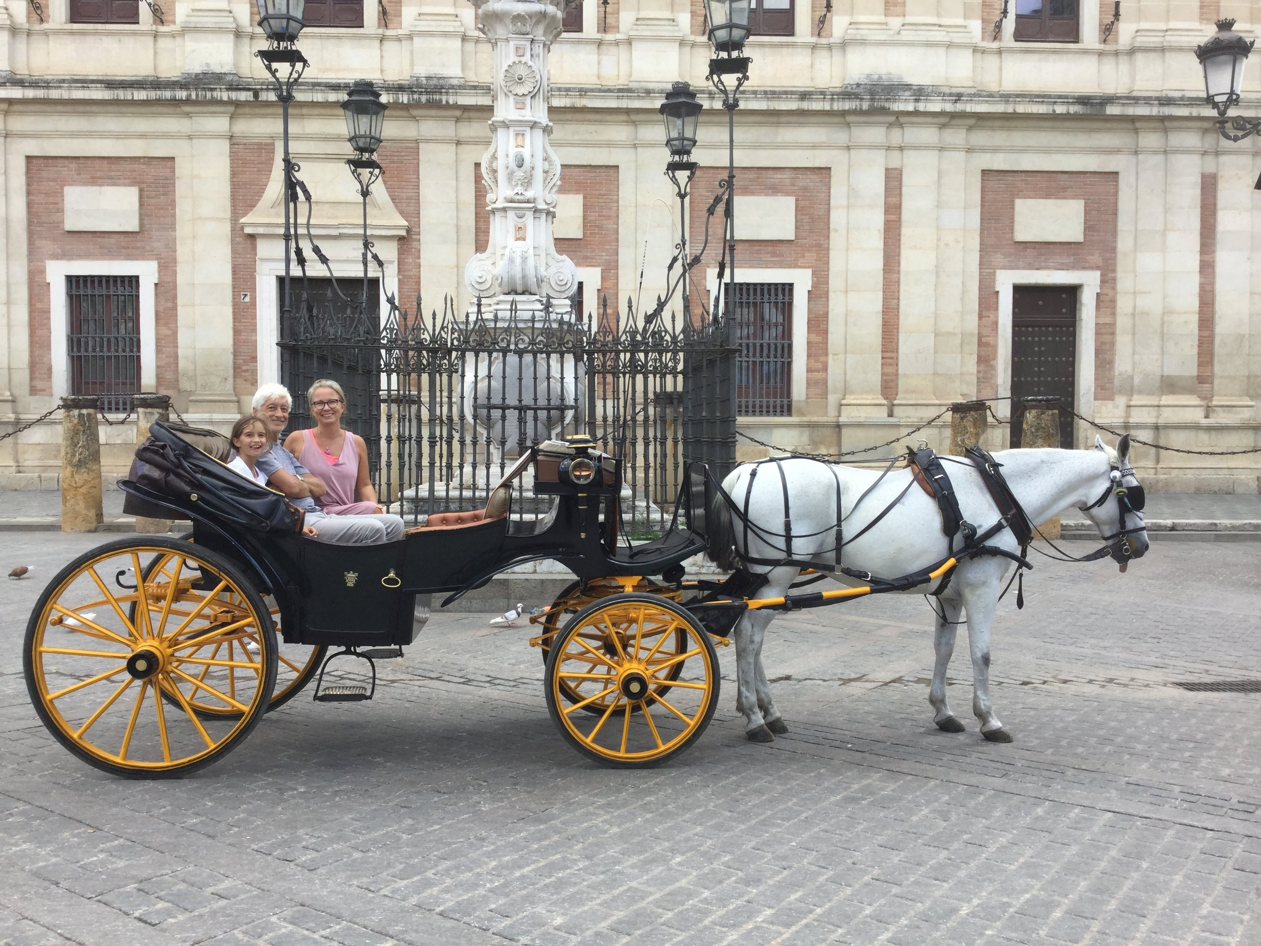 The horse and carriage in whole.
