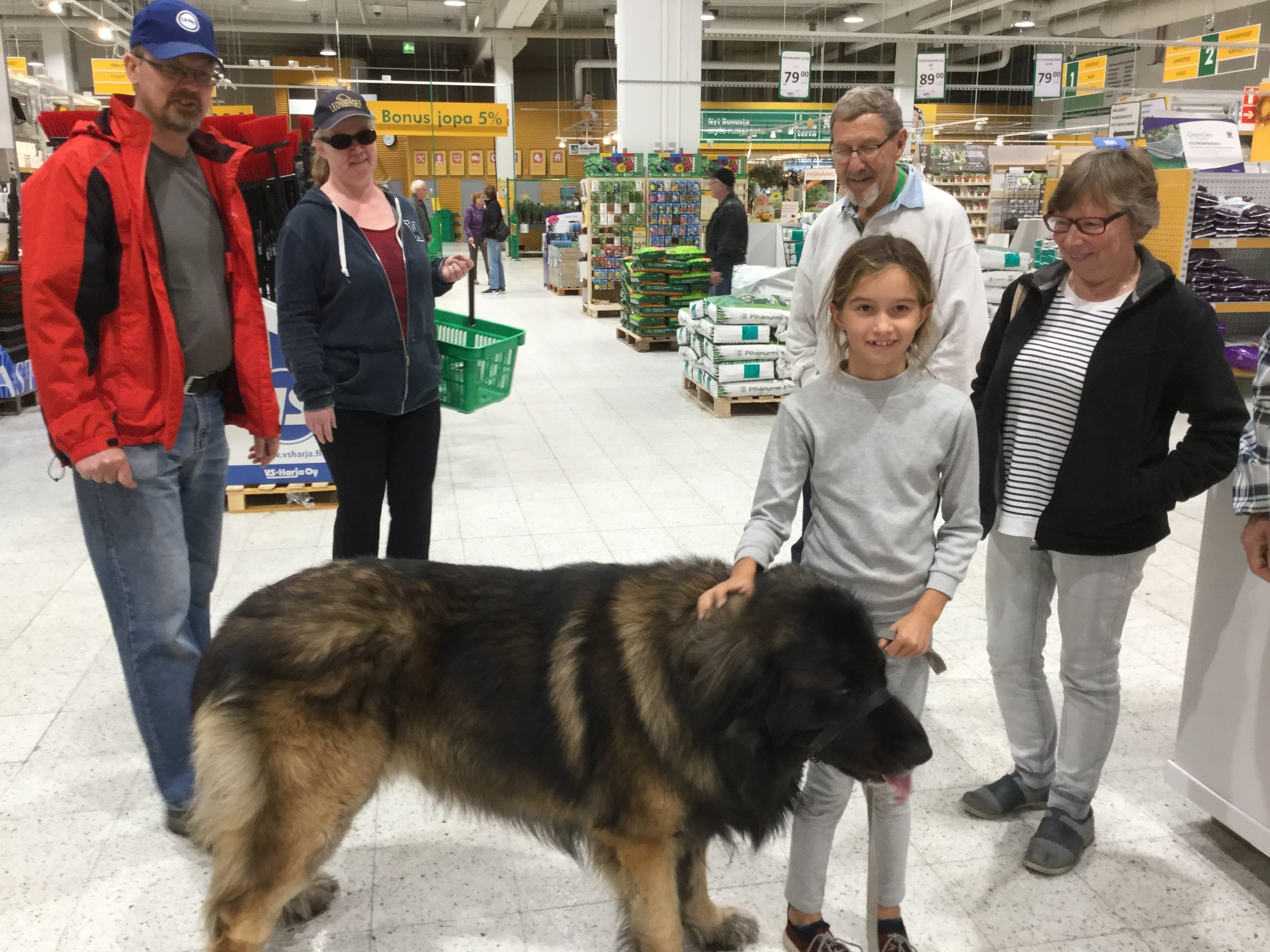 The dog weighs 67 kilos!