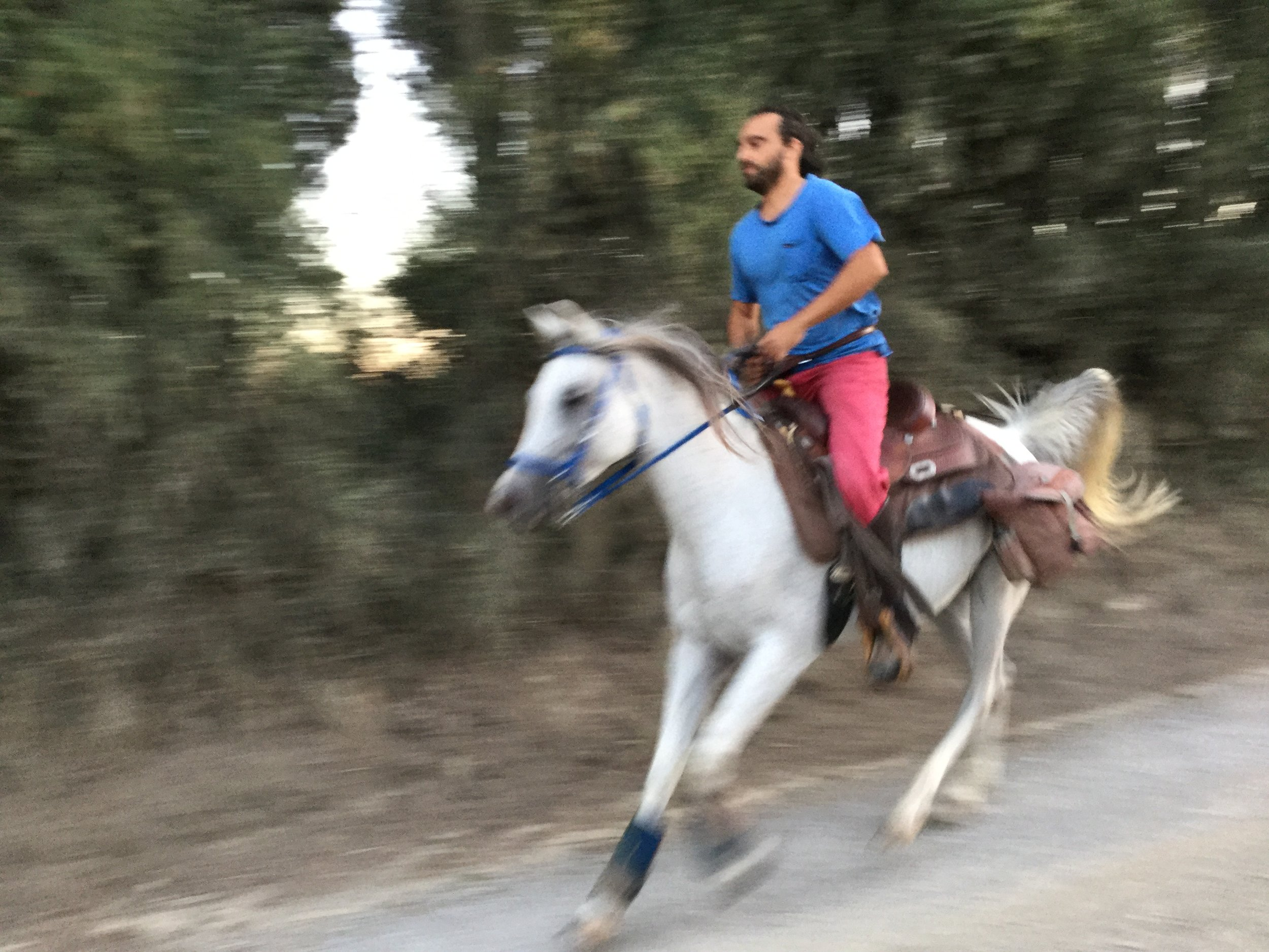 On our last night, we went for an evening walk through the city. On the way back we heard horse hooves and sure enough this handsome Italian dude was galloping home on his mount. We loved seeing that.