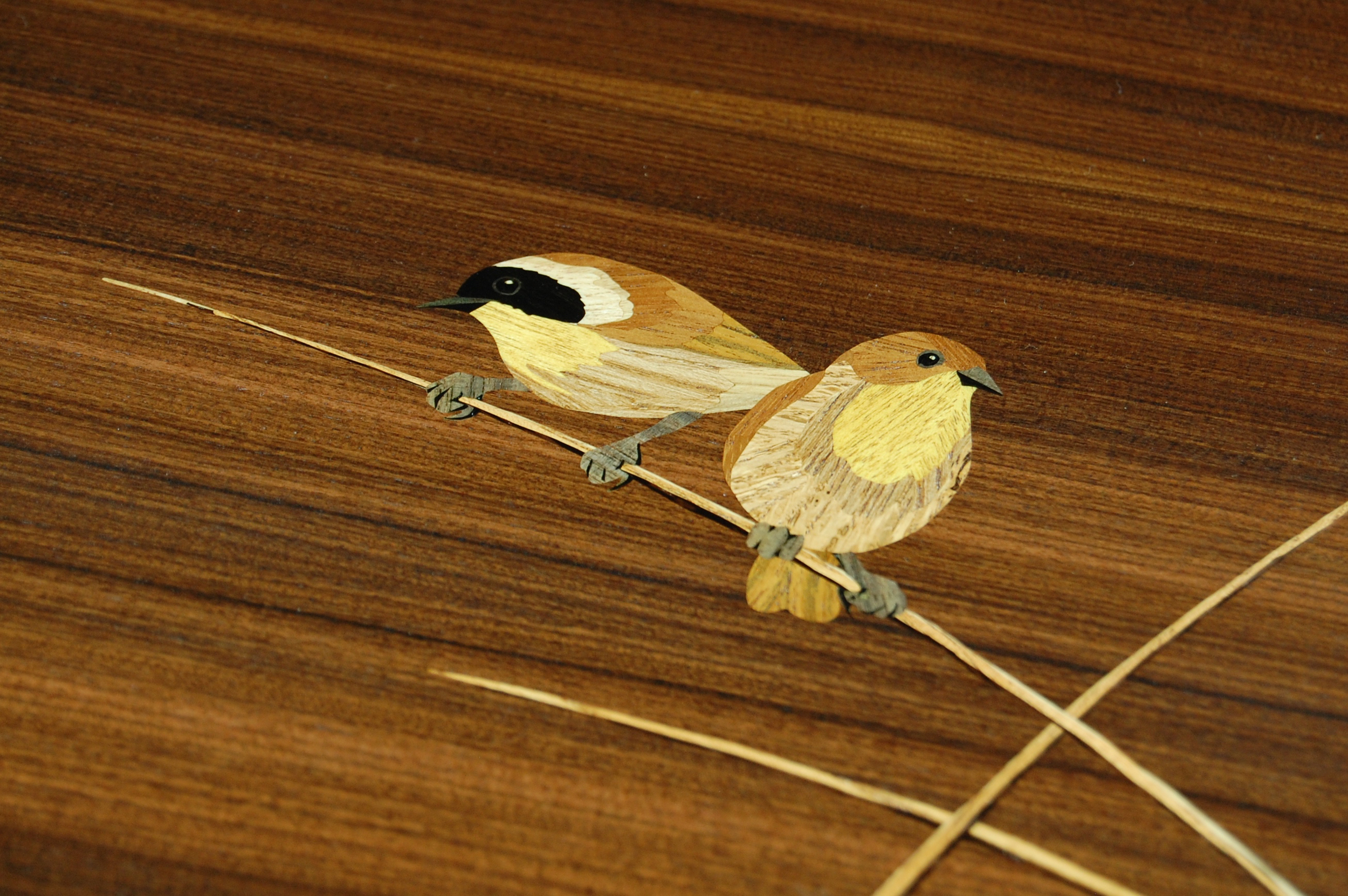 Yellowthroats marquetry detail