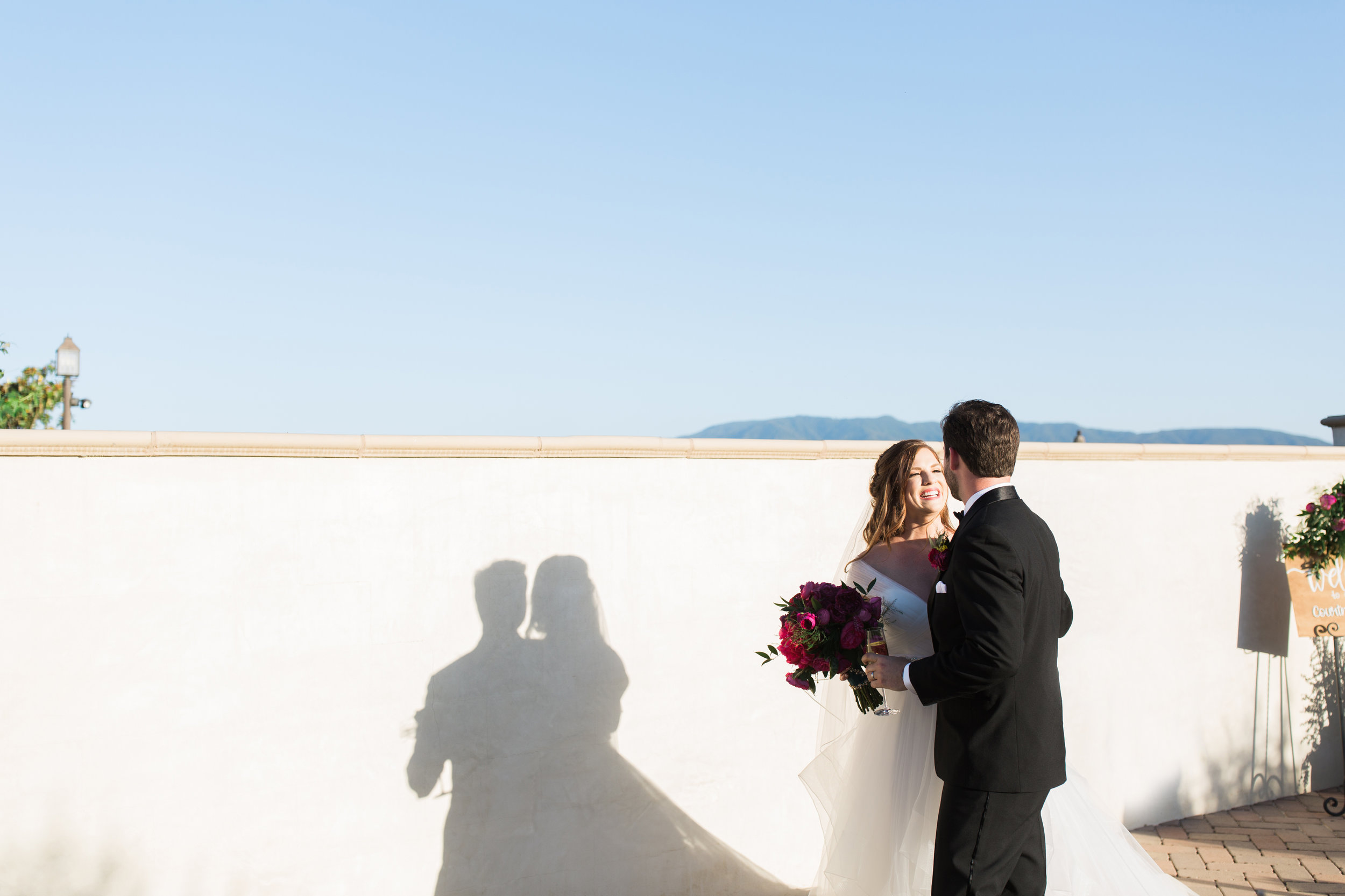 Leoness Cellars Winery Wedding Photographer Leah Vis  (3).jpg