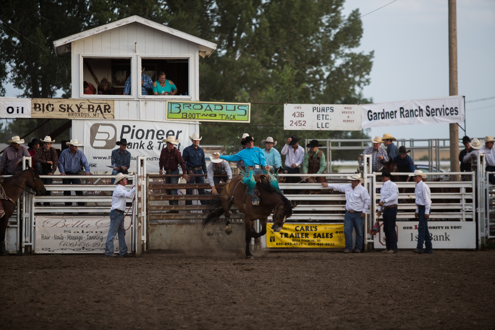 Saddle Bronc at the Broadus Rodeo.