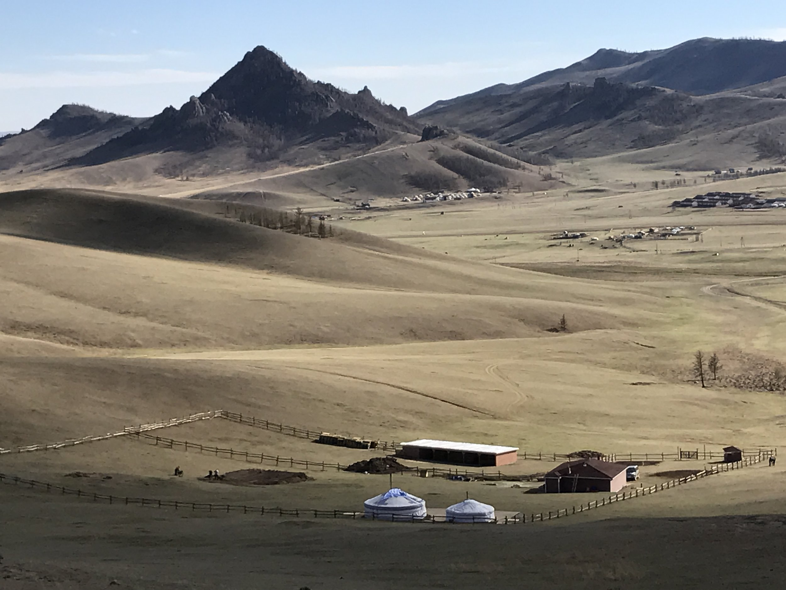 Velvety-looking grass carpets much of Mongolia