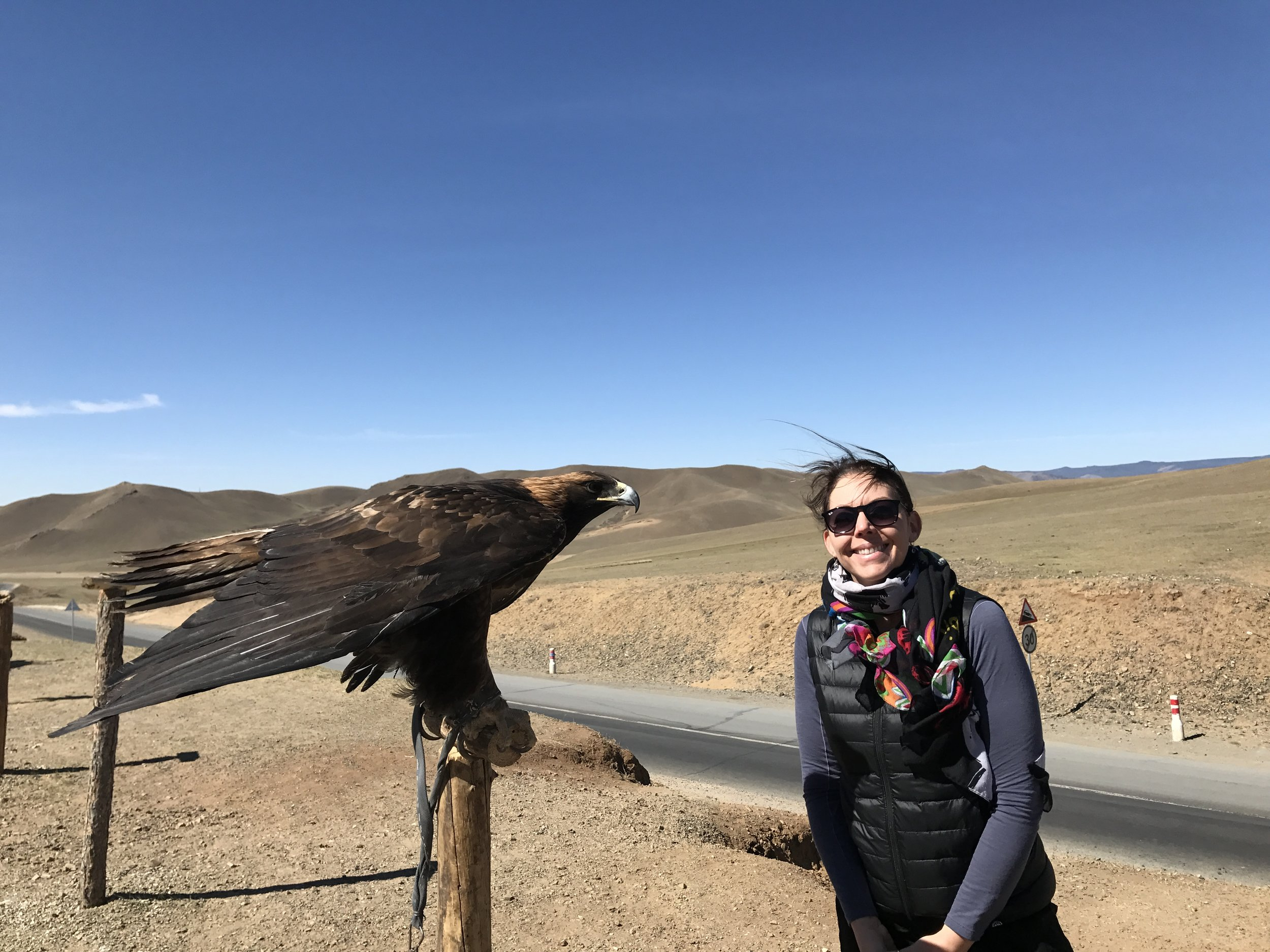 Golden Eagles are trained for hunting in western Mongolia