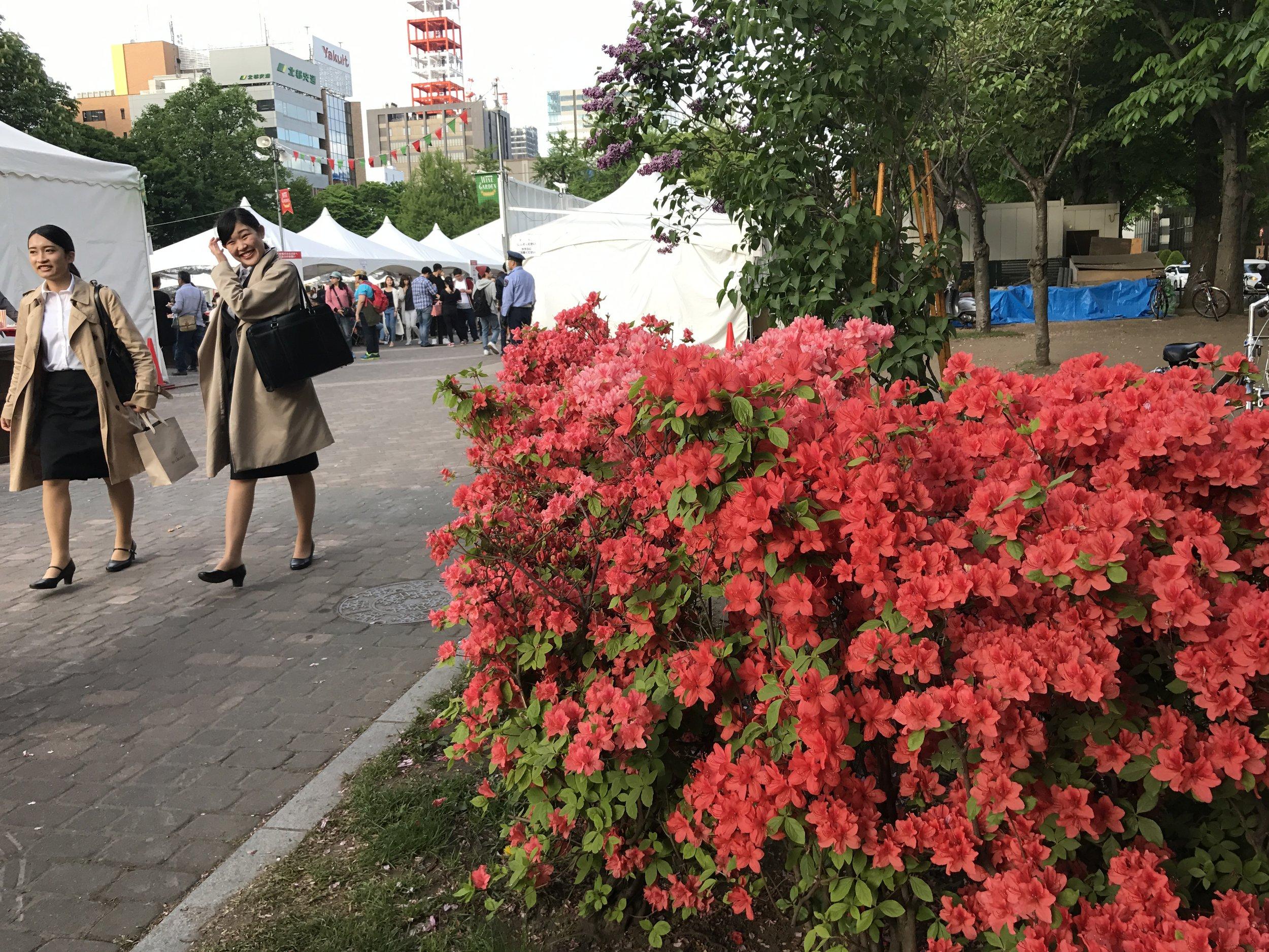 Wine and Ramen Festival in Odori park