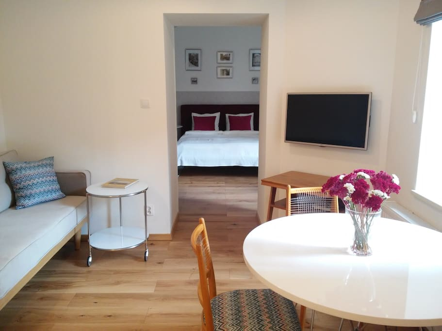 Professionally designed apartment in Krakow, Poland