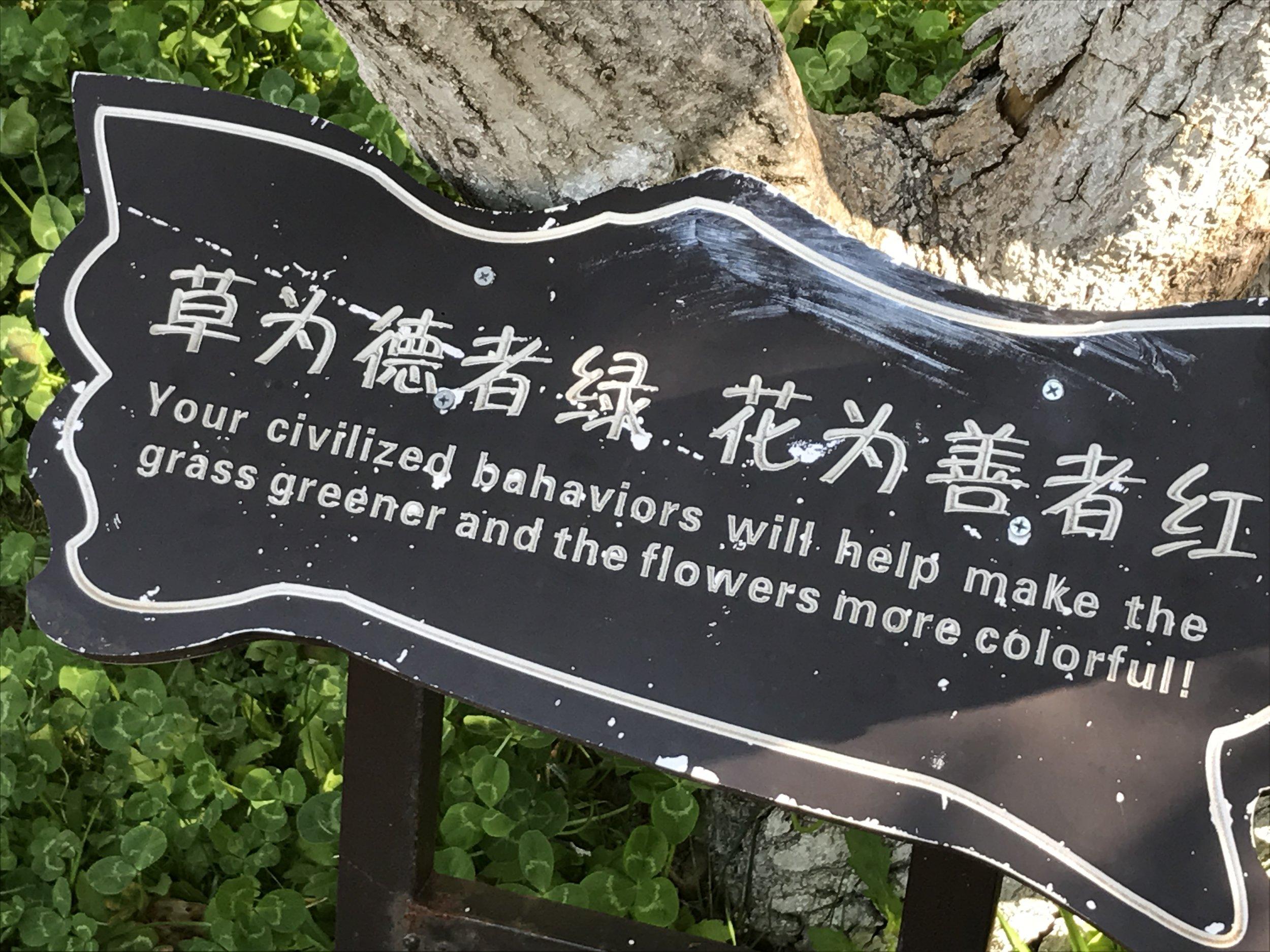 A metaphor for life, perhaps?