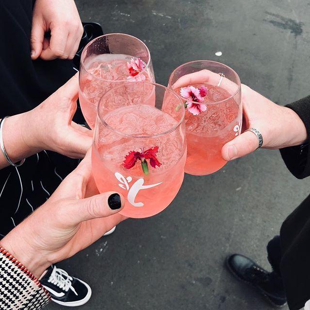 Rose & Gin @tasteofauckland  #experential #fridaymood #teamcopper #dreamwork #cocktails #gnt #weekendvibes
