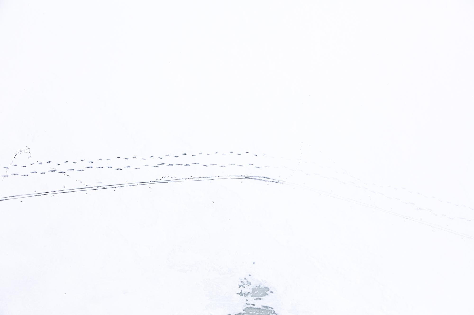 160206_WinterAerials_00872T.JPG