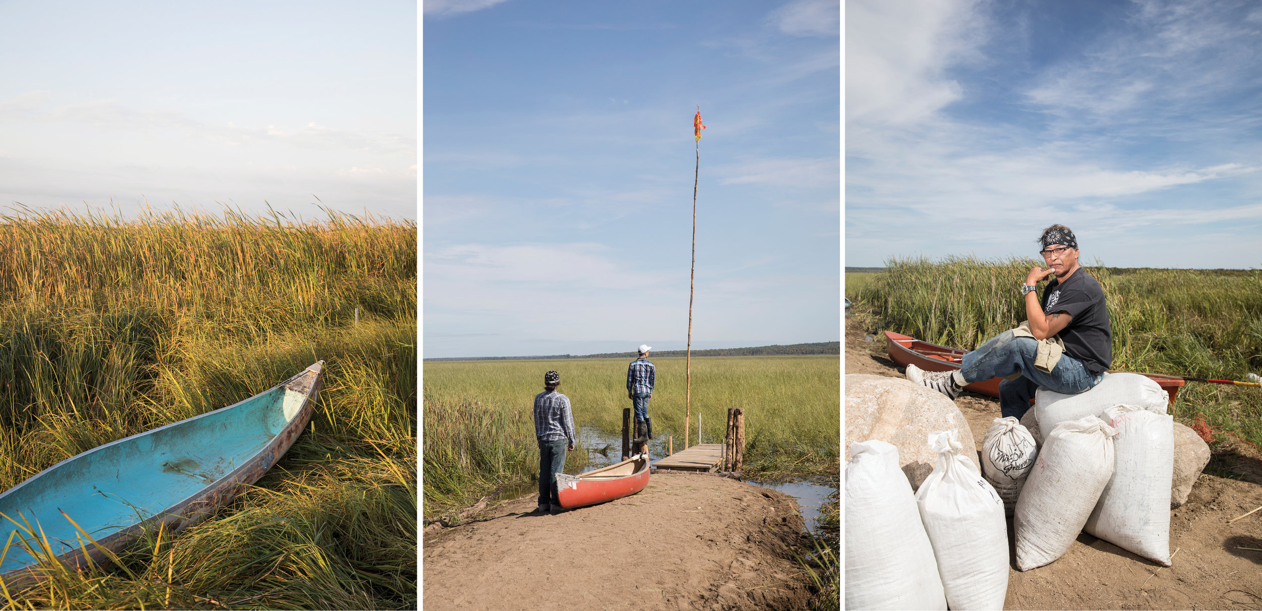 Wild Rice Harvest for Saveur Magazine