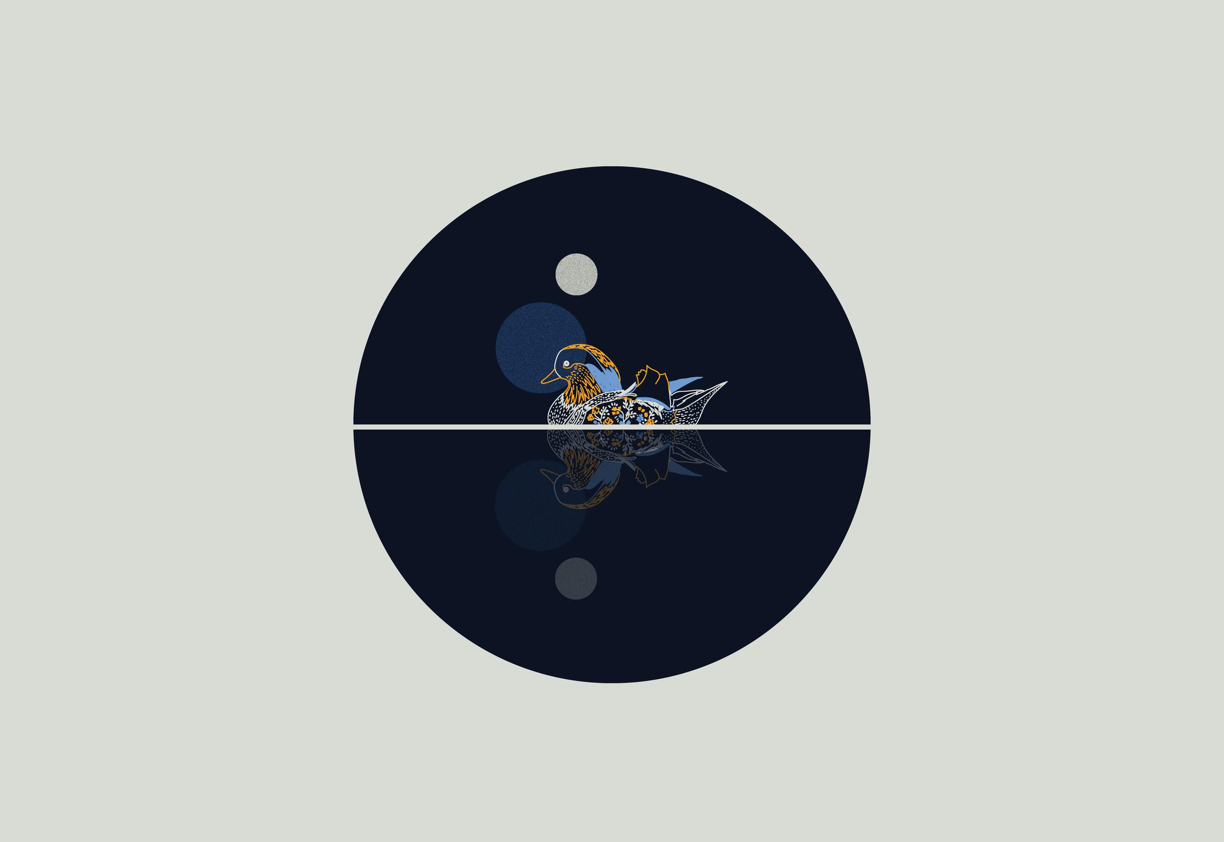 composicion-nocturna6.png