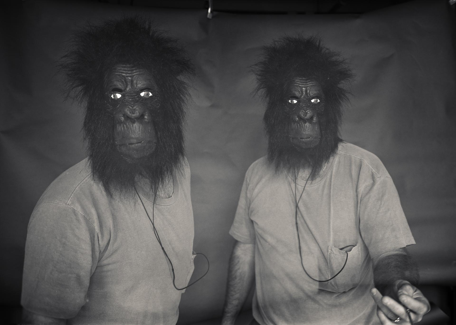 GorillaGodzilla002.jpg