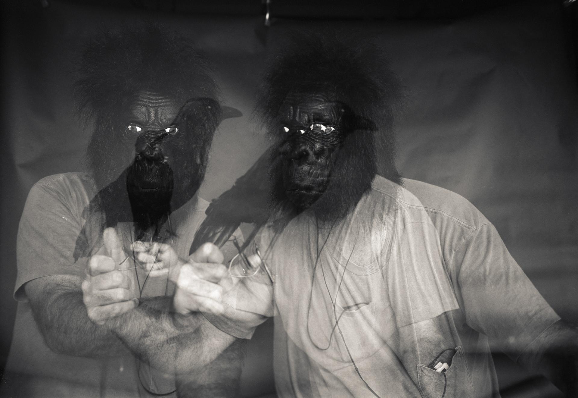 GorillaGodzilla004.jpg