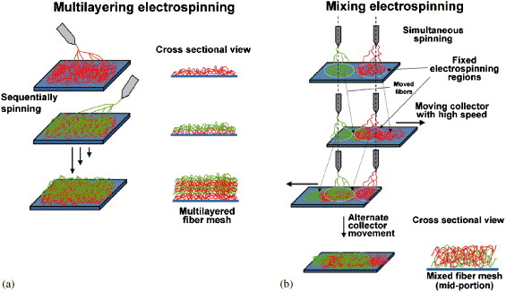 Figure 2. A visual depiction of multilayered and mixed electrospinning techniques. From  Kidoaki et al., 2005 .