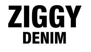 zig.jpg
