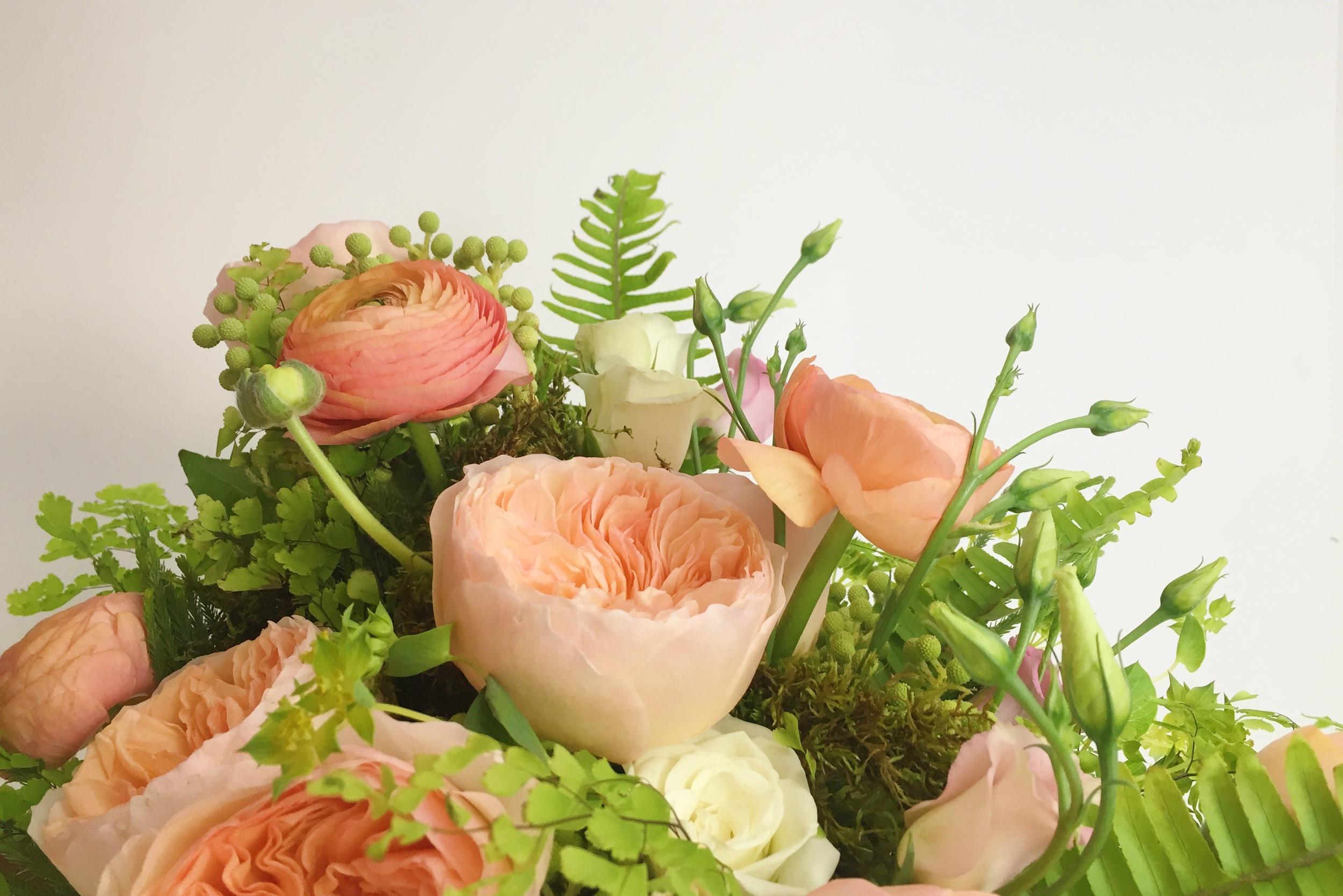 coral flowers.jpg