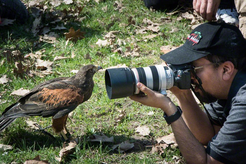 BirdsPrey15-1779.jpg
