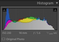 ETTR Histogram after post processing