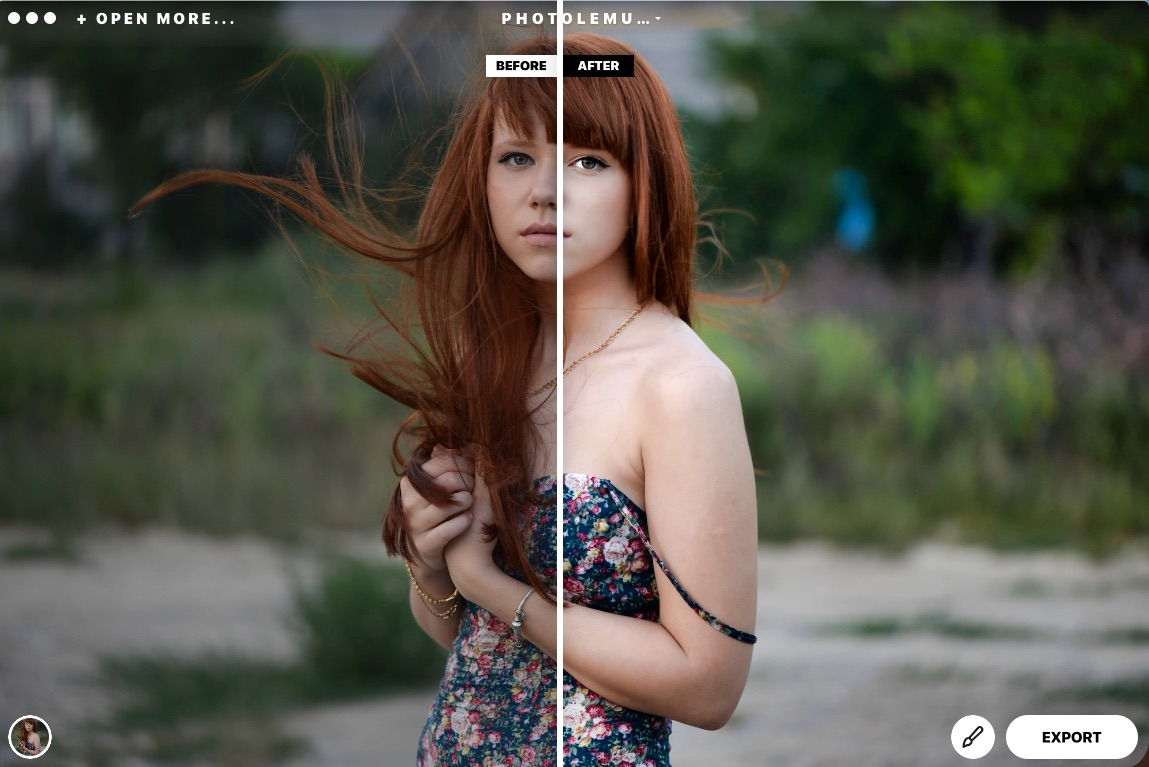 The Photolemur interface could not be much simpler