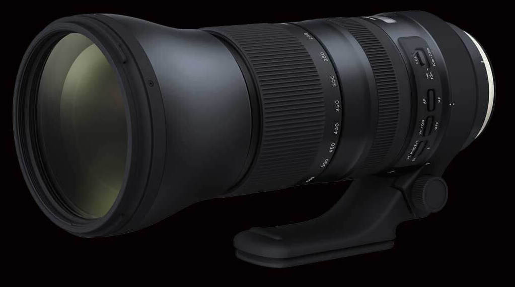 This Tamron 150-600 G2 is really an incredible product for the price, so long as expectations are managed