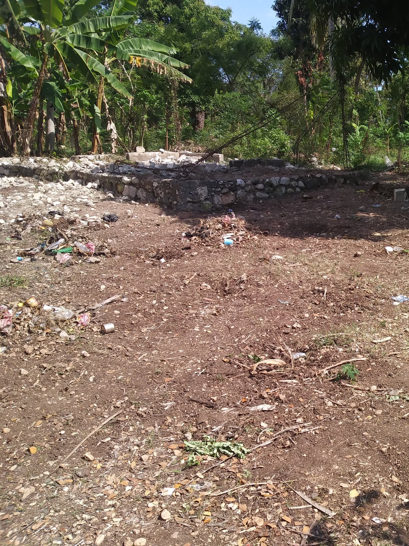 Deba's land, cleared and ready to build on!