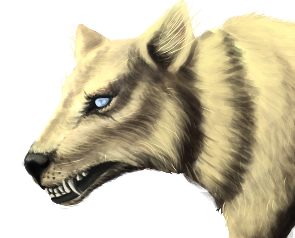04Thymos-Ainu Wolf.png