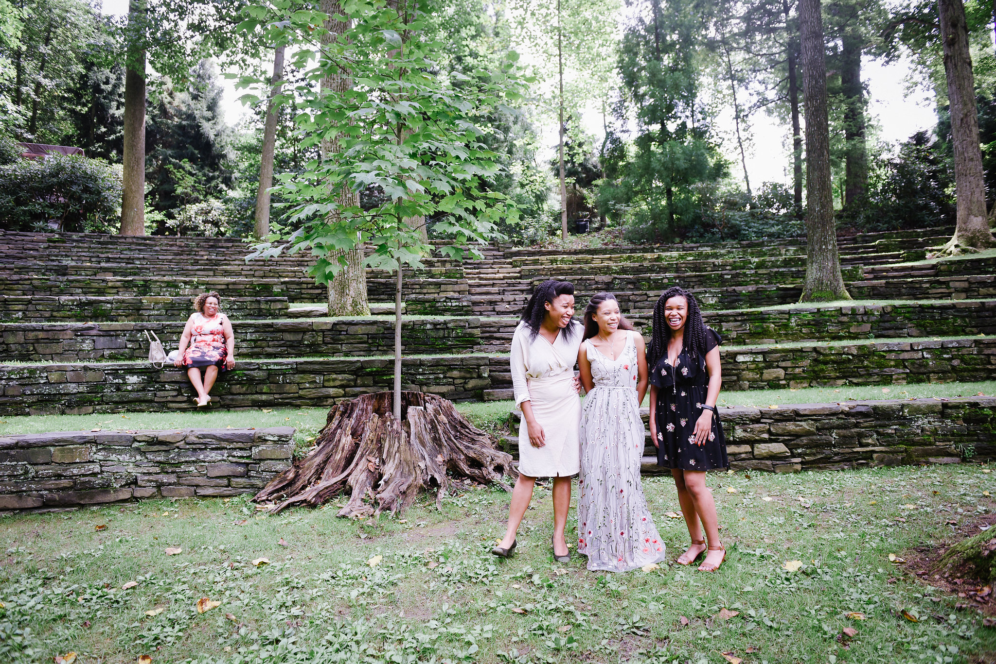 Between these three sisters and their mom sits a sapling growing inside the trunk of a older tree.