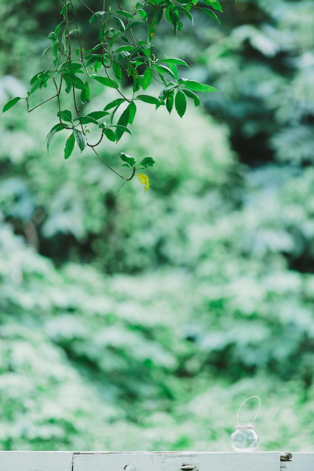 20131027 Mervyn & Ireen - Proposal 7 Chris Chang Photography.JPG