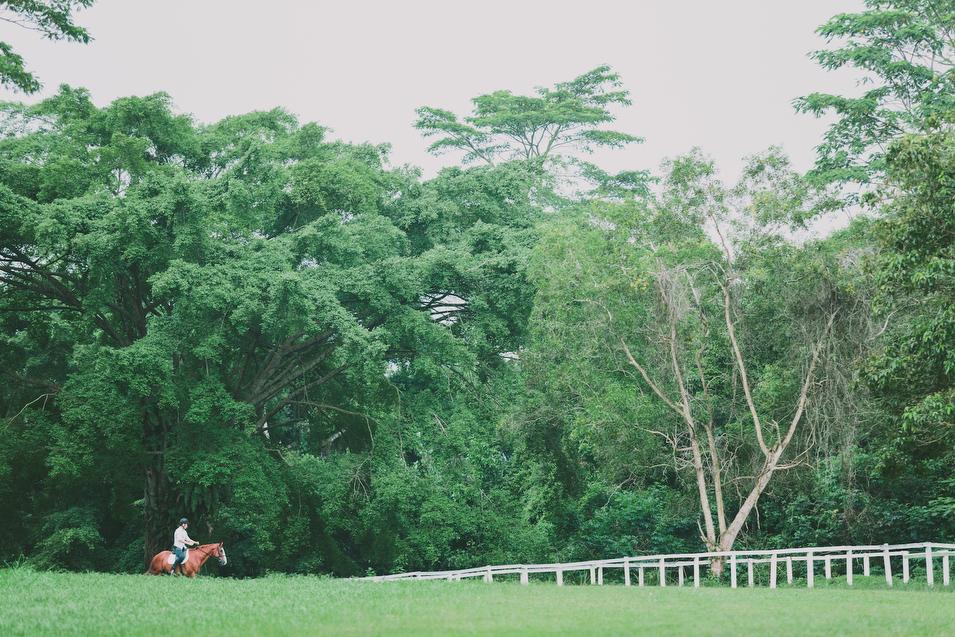 20131027 Mervyn & Ireen - Proposal 99 Chris Chang Photography.JPG