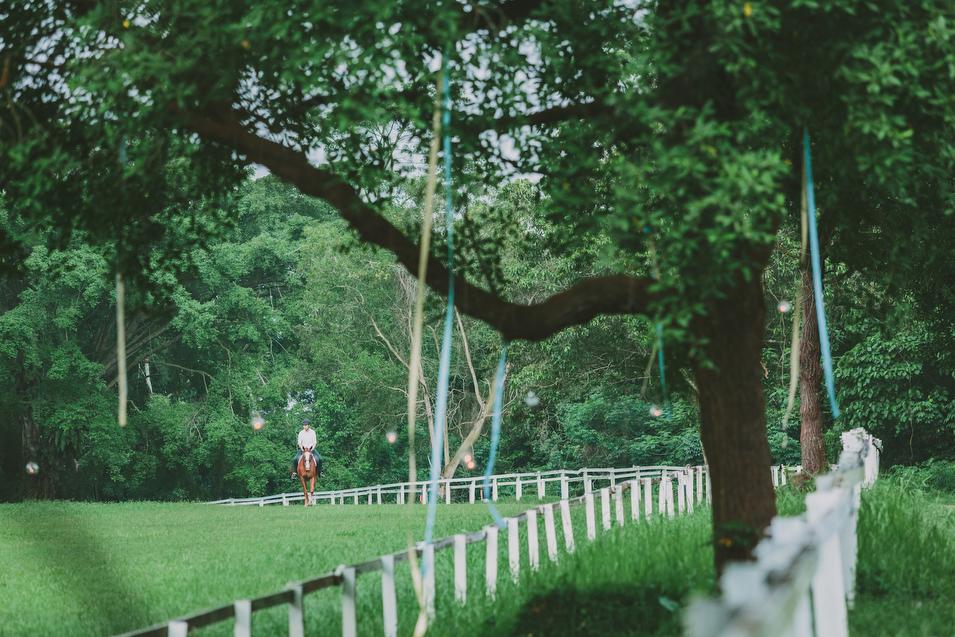 20131027 Mervyn & Ireen - Proposal 103 Chris Chang Photography.JPG