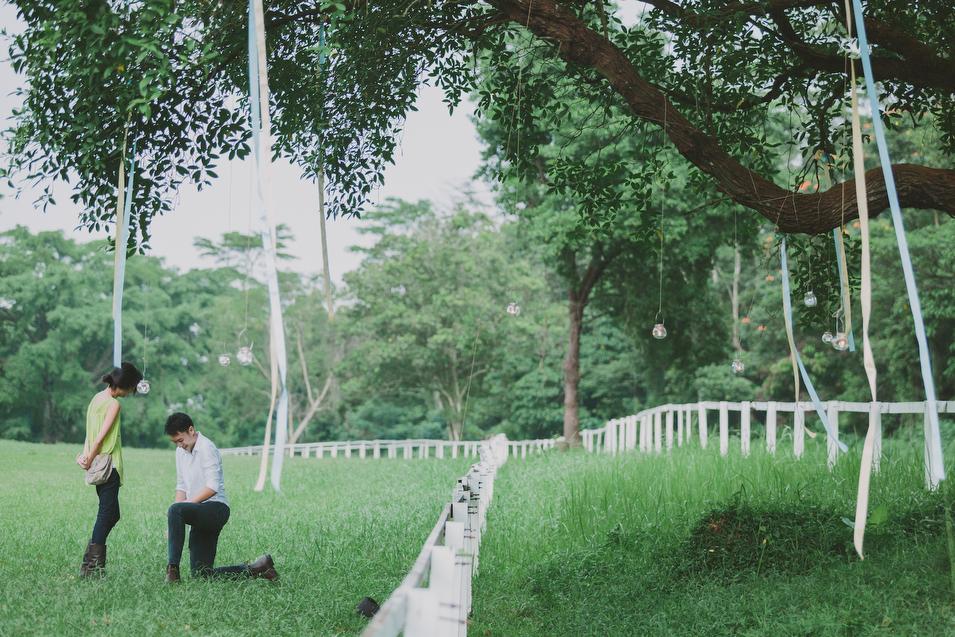 20131027 Mervyn & Ireen - Proposal 126 Chris Chang Photography.JPG