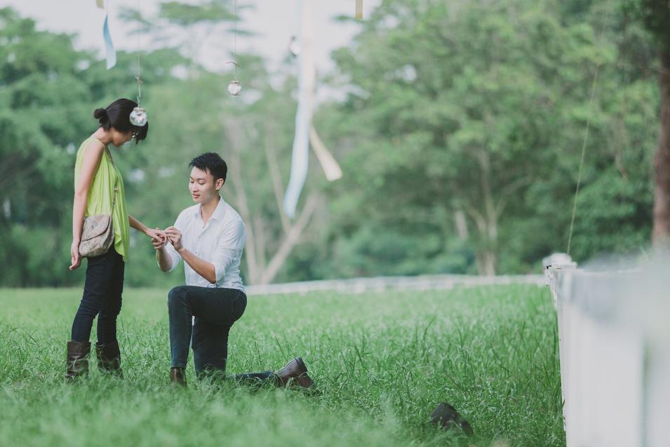 20131027 Mervyn & Ireen - Proposal 130 Chris Chang Photography.JPG