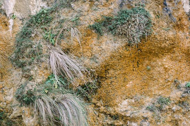 Great Ocean Road sandstone beach grasses slow diaries
