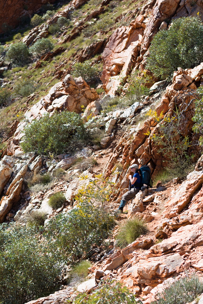 slow diaries Larapinta Trail