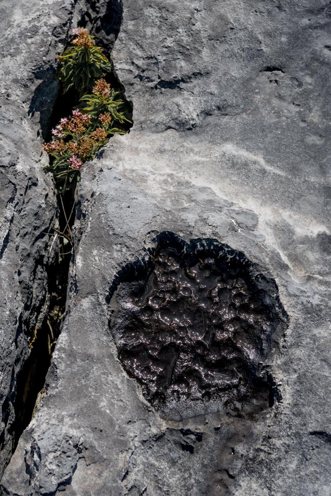 The Burren slow diaries.jpg