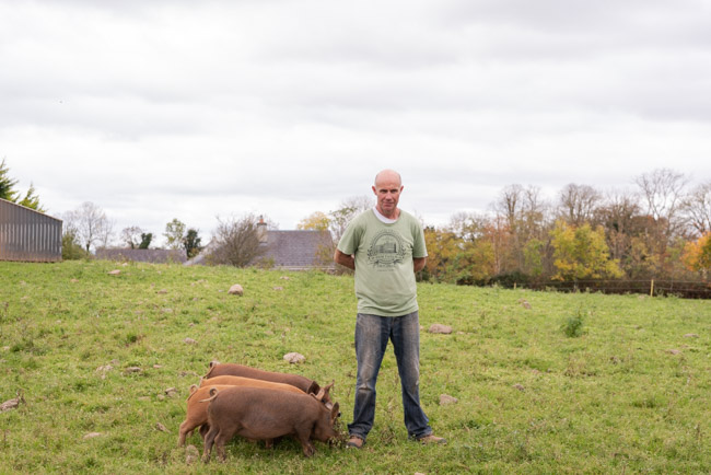 Rigneys Farm, Co. Limerick