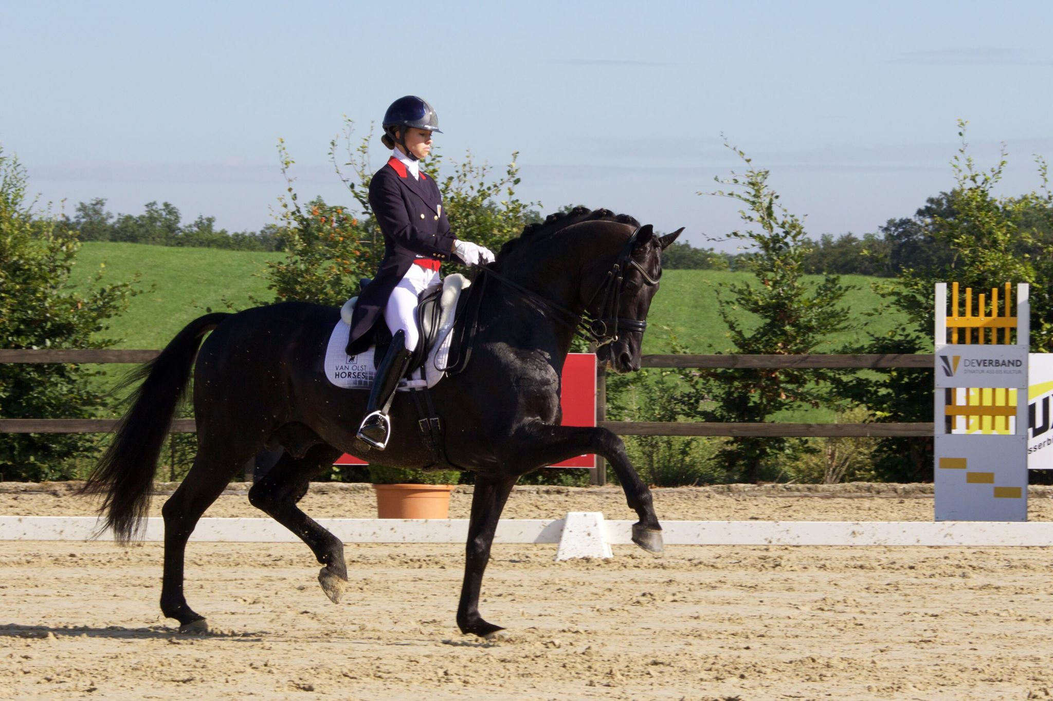 Glamourdale and Charlotte Fry from today's test at Leudelange LUX