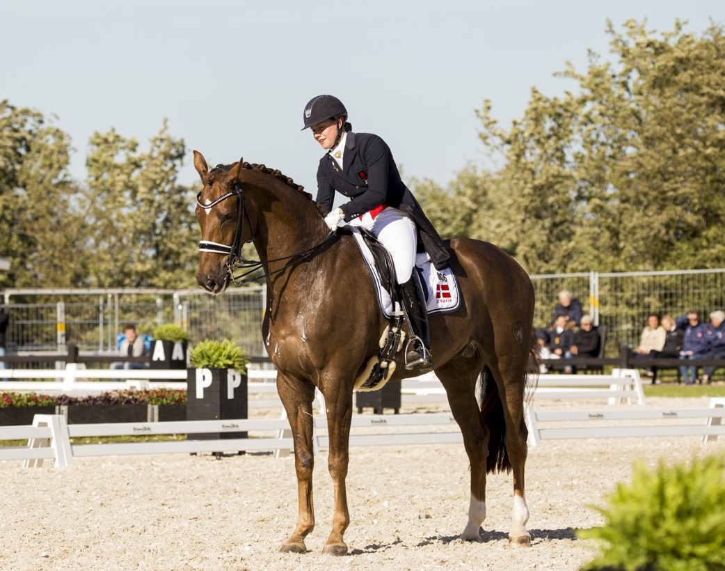 Bohemian and Cathrine Dufour during Equitour 2017 - photo credit: H2R