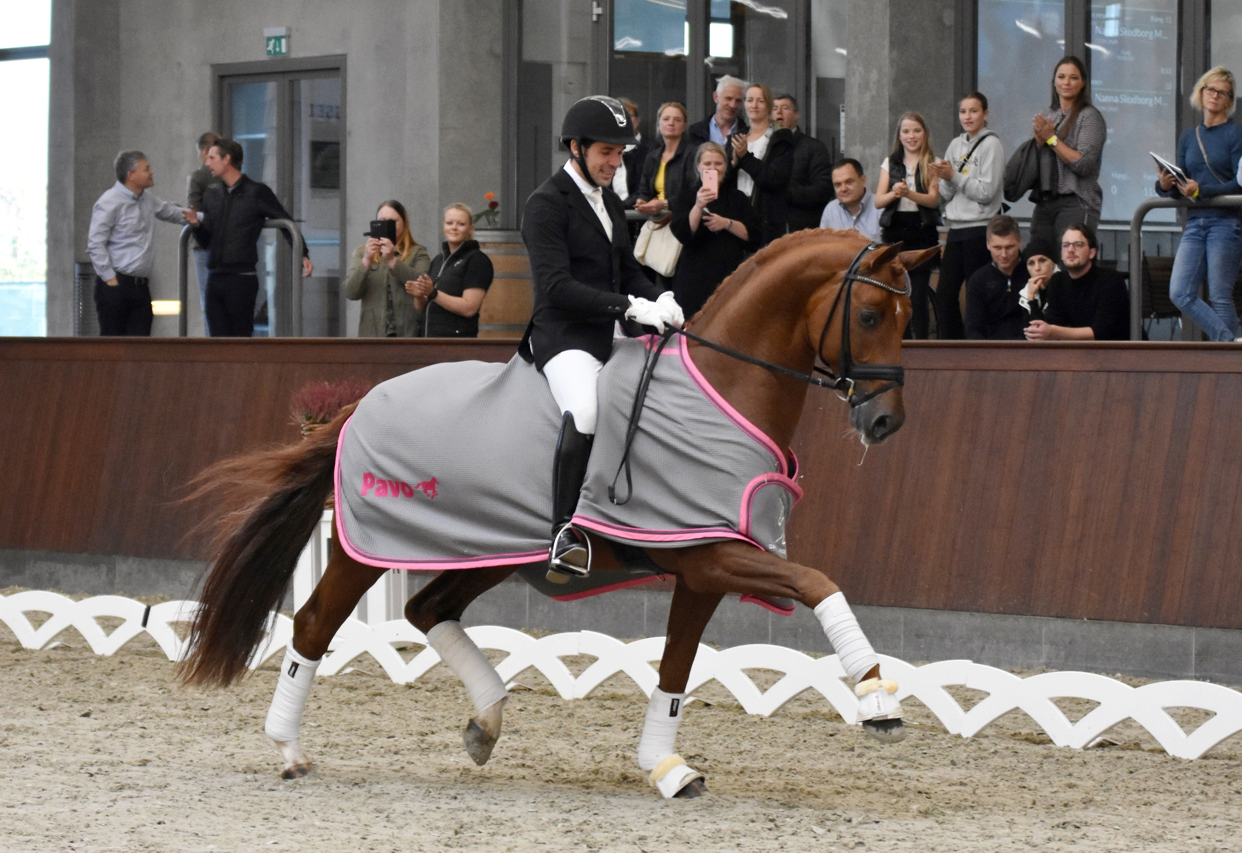 Springbank II VH and Severo Jurado Lopez - photo credit: Helgstrand Dressage/Mia Bach